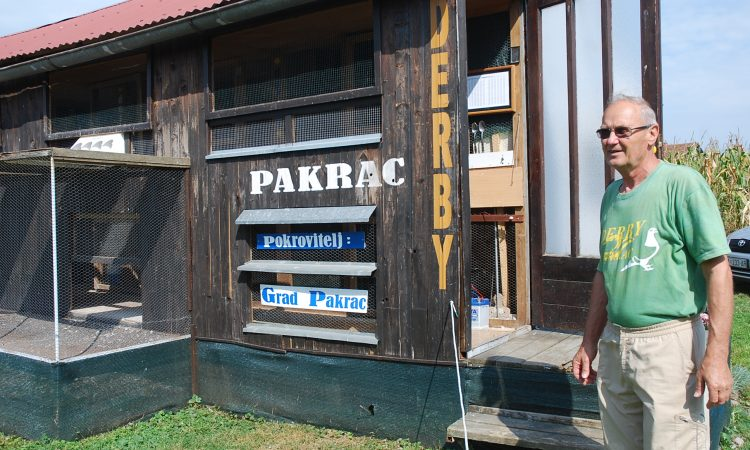 GOLUBARSKI DERBI PAKRAC 2016: Iz Beča za 4 sata i 18 minuta