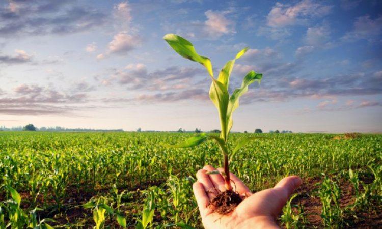 LRA PODUZETNIČKI CENTAR PAKRAC POZIVA POLJOPRIVREDNIKE Uključite se u Program ruralnog razvoja