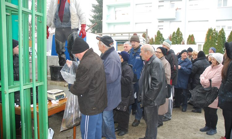 GRADSKA TRŽNICA PAKRAC Na Badnjak ponovo prodaja svježe ribe