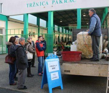 GRADSKA TRŽNICA PAKRAC U četvrtak prodaja svježe ribe