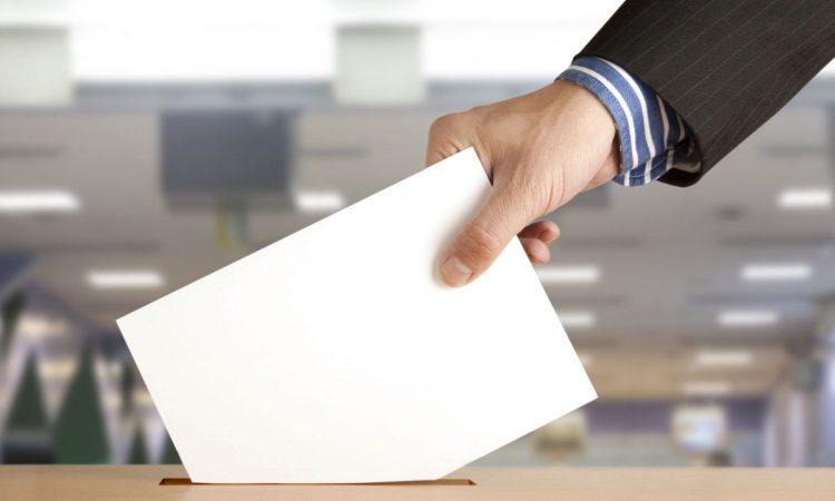IZBORI ZA MANJINSKA VIJEĆA Na birališta 5. svibnja