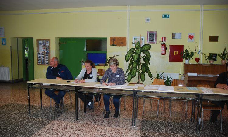 MANJINSKI IZBORI Manjine u nedjelju na birališta