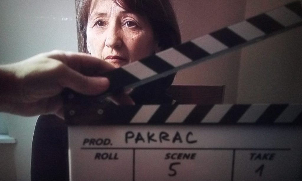 NA PARIŠKOM FESTIVALU Nagrađen film o pakračkoj psihijatriji