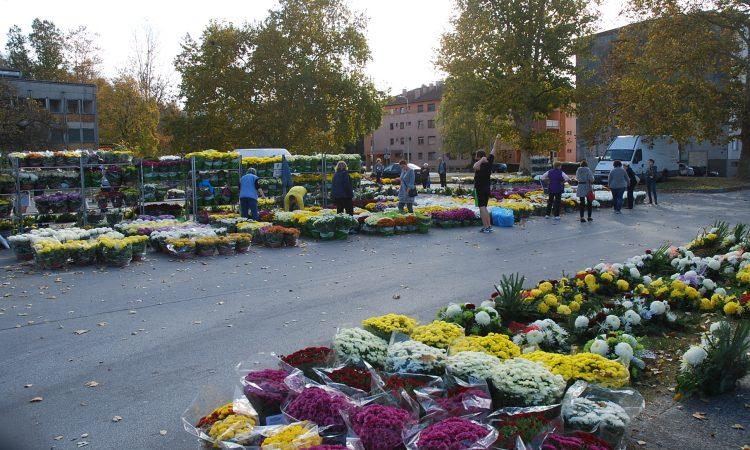 UOČI BLAGDANA SVIH SVETIH: U subotu prodaja cvijeća na tržnici